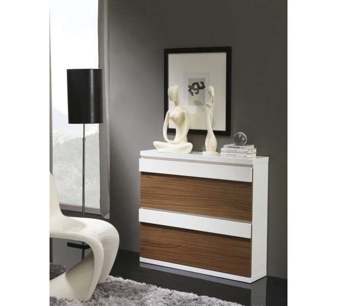 meuble chaussures moderne 2 tiroirs shoe. Black Bedroom Furniture Sets. Home Design Ideas
