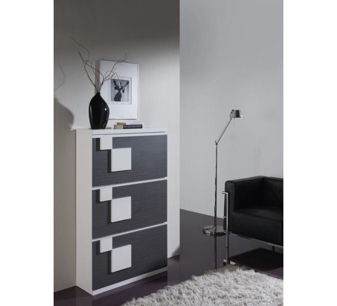 meuble chaussure moderne 3402. Black Bedroom Furniture Sets. Home Design Ideas